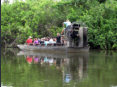 Homestead - Everglades Alligator Farm - Airboat Tour